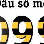tim-hieu-ve-y-nghia-cua-sim-dau-099-la-gi-1